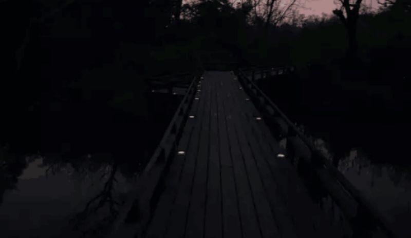 Puntos emisores de luz que señalan el camino de noche